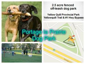 P la P Dog Park