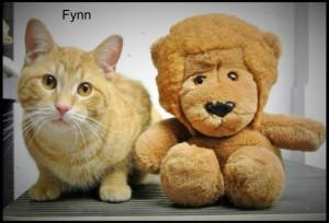 Fynn A